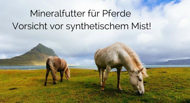 Mineralfutter für Pferde – Vorsicht vor synthetischem Mist!
