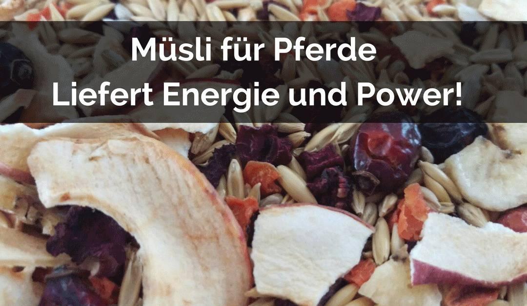 Müsli für Pferde – Liefert Energie & Power!