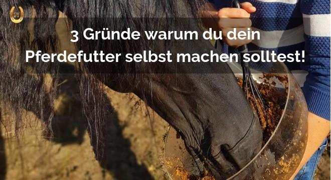 Pferdefutter selbst machen
