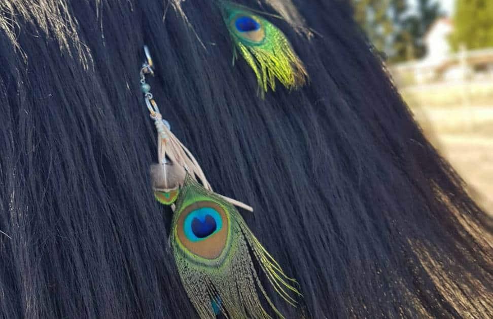 Federschmuck für Pferde