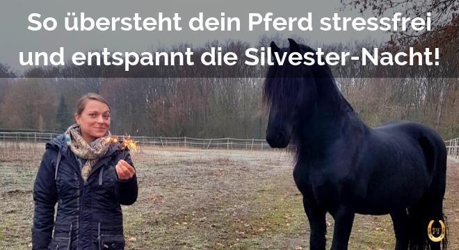 silvester pferd