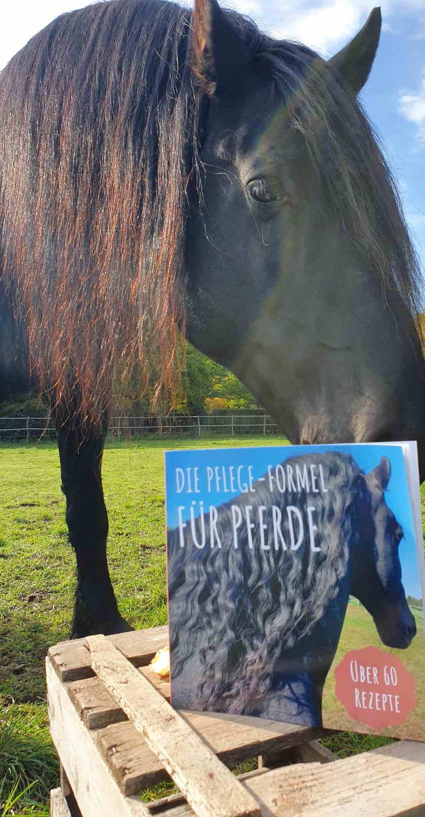 Pflegeprodukte Pferd