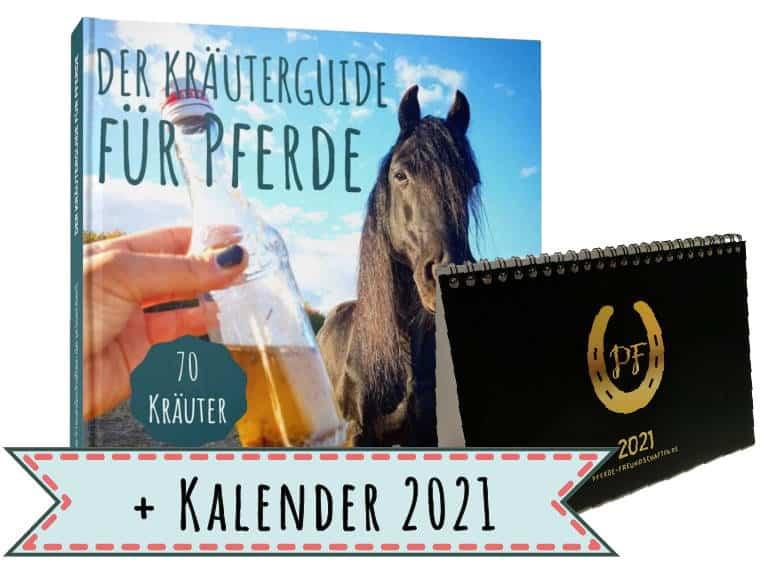 KG + Kalender